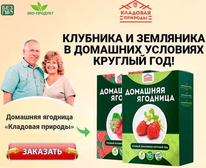 Купить домашняя ягодница