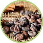 Какао бобы входят в состав slim biotic