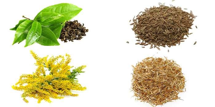 Состав чая Gardenin Organic Tea.