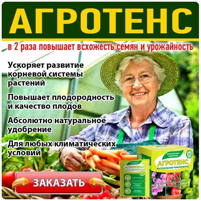 Удобрение Агротенс купить по доступной цене.